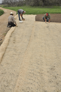 Wood Fiber Netfree Erosion Control Blanket Product Detail At Native American Seed