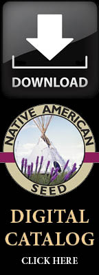 Wildflowers and Native Grasses - Catalog Request